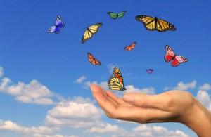 dreamstime_xs_10394442 butterflies